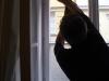 Umývanie okien domu, domácnosti_ Bratislava
