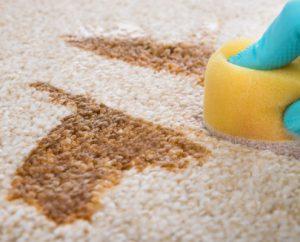 upratovanie domácností